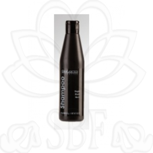 CHAMPU COLOR NEGRO SALERM 250ML.