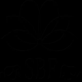 CUCHILLA MOSER TYPE 1230 (REX)