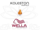 TINTE KOLESTON WELLA N�0/33  60ML.