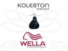 TINTE KOLESTON WELLA N�2/0  60ML.