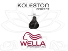 TINTE KOLESTON WELLA N�3/00  60ML.