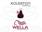 TINTE KOLESTON WELLA N�33/66  60ML.