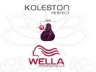 TINTE KOLESTON WELLA N�44/66  60ML.