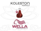 TINTE KOLESTON WELLA N�66/56  60ML.