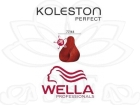 TINTE KOLESTON WELLA N�77/44  60ML.